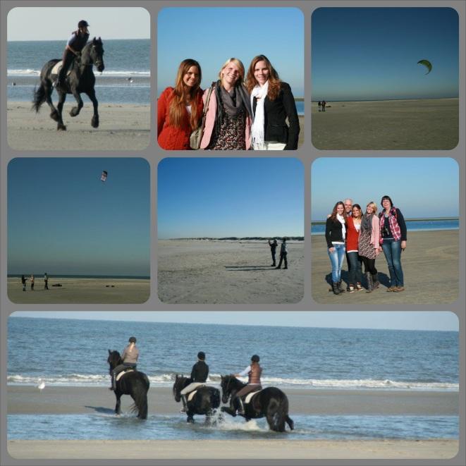 Ameland_2011