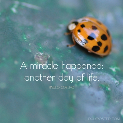 a miracle happened; another day of life